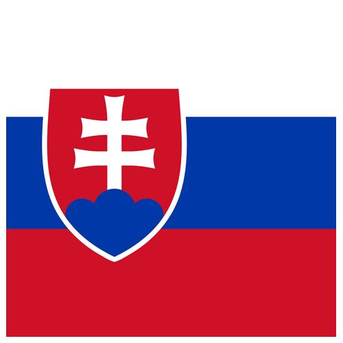 Slovensko icon